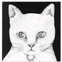 【中古】 ALL YOU NEED IS CAT 〜猫こそはすべて /テンテンコ 【中古】afb