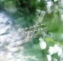 【中古】 quantum stranger(初回生産限定盤B) /斉藤壮馬 【中古】afb