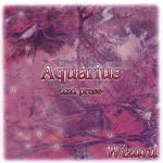 【中古】 Aquarius /Wizard 【中古】afb