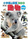 小学館の図鑑 NEO 動物 DVD付き[新版]
