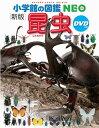 小学館の図鑑 NEO 昆虫 DVD付き[新版]