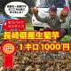 長崎県産天然生菊芋(天然のインスリン)とも呼ばれるスーパーフード、各メディアで取り上げられ…