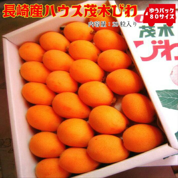 フルーツ・果物, びわ 20