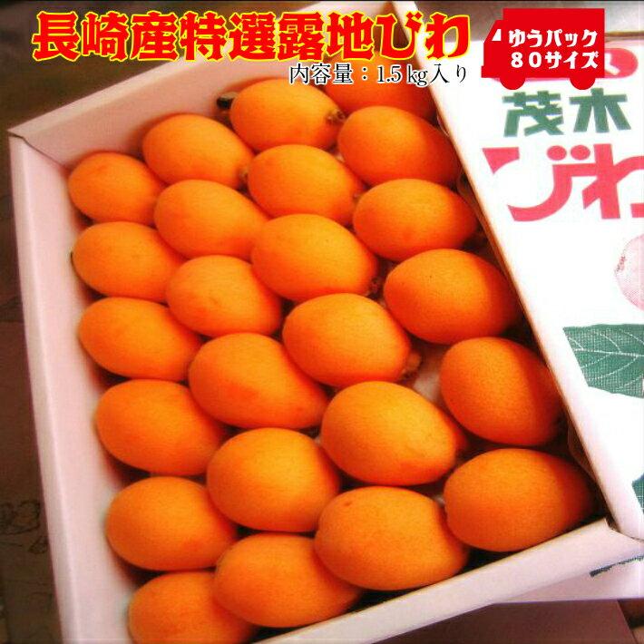 フルーツ・果物, びわ 30 2L