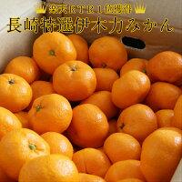 みかん/訳あり/送料無料/フルーツ・果物/クレープ/ジュース/ハウスみかん