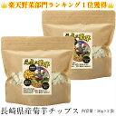 【送料無料】菊芋チップス 100g 50g×2袋 健康のためキクイモチップス おいしい菊芋サプリの決定版、菊芋...