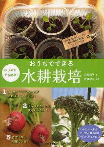 はじめてでも簡単!おうちでできる水耕栽培 材料は100円ショップで!安心・安全の野菜、ハーブ...