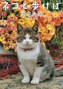 【2500円以上送料無料】ネコと歩けば ニッポンの猫写真集/岩合光昭【RCP】