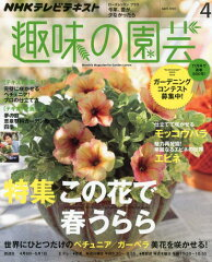 【2500円以上送料無料】NHK 趣味の園芸 2014年4月号【雑誌】