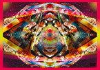【店内全品5倍】エンドリケリー LIVE DVD/244 ENDLI−x【3000円以上送料無料】