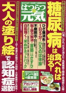 はつらつ元気 2015年11月号【雑誌】【後払いOK】【2500円以上送料無料】