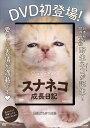 DVD 砂漠の天使 スナネコ成長日記【3000円以上送料無料】