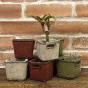 【CS3169】□【DL5】クラシカルプランター ミニ[スクエア] 3個セット【ガーデン 鉢 …
