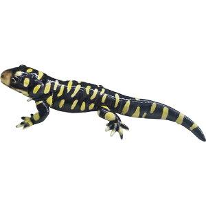 REPTILESMAG3405□□BR6MAGNETサラマンダーイエローディスプレイオブジェ動物爬虫類オブジェ置物磁石おしゃれインテリアガーデンオーナメントマグネットコレクションインスタ雑貨プレゼント