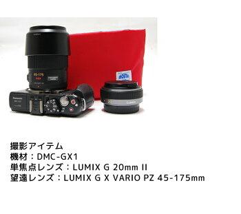 MOUTHミニカメラバッグ小型ミラーレス一眼レフコンデジ女子おしゃれカメラバックミニショルダーバッグDeliciousTinymark-1マウスタイニーマーク1日本製MJS12026MJC13034カメラパック
