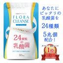 乳酸菌 サプリ 乳酸菌 高配合 24種類 1袋で5兆個 Bo...