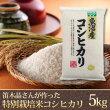 笛木晶さんが作った特別栽培米コシヒカリ5kg【平成27年産米】
