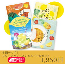 【送料無料】手間いらずで夏気分を盛り上げるフルーツカレーとレモネードのセット