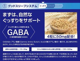 ネルアップ20粒サプリメントサプリ健康食品栄養機能食品ダイエットカロリー黒しょうがカルニチンフォルスコリGABAラフマネムノキ