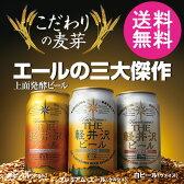 【送料無料】ビール 地ビール クラフトビール セット 詰め合わせ 飲み比べセット 3缶セット THE軽井沢ビール ヴァイス・アルト・プレミアムエール 送料込 お試し