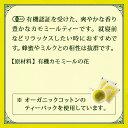 有機カモミールティー20g 【 有機 オーガニック ハーブティー ハーブ ティー カモミール Organic Camomile Infusion 】 3