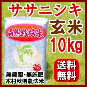 2015年産(平成27年) 自然栽培 『無農薬 ササニシキ 玄米 10kg 』  送料無料/さ…
