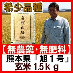 半額セール!無農薬 自然栽培 玄米 「旭1号 玄米 1.5kg」お試し 送料無料 ササニシキ・…