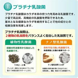 乳酸菌サプリ美エイジ(120粒入)1ヶ月分みらいの美肌(乳酸菌マンゴスチンエキス植物酵素ポリフェノールキサントン糖化ケア成分配合)