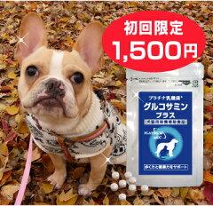 グルコサミン コンドロイチン/乳酸菌 含有食品/ペット サプリメント/犬の関節サポート/ナノ型乳...