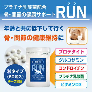 犬の関節ケアと同時にお腹の健康・抵抗力UP!プラチナ乳酸菌入「グルコサミンプラス」60粒入