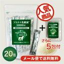 ペット用乳酸菌サプリメント プラチナ乳酸菌5000α(20包...