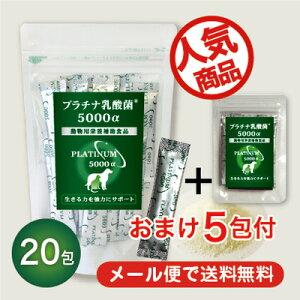 ペット/乳酸菌/サプリメント/プラチナ乳酸菌5000億個(犬用乳酸菌)