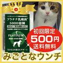 【初回限定500円ご家族様2コまで】(犬、猫用乳酸菌)