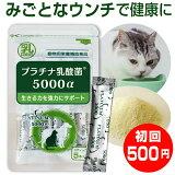 犬 猫 乳酸菌 サプリ プラチナ乳酸菌5000α(初回限定 お試し ご家族様2コまで)pet dog cat supplement2コご購入で送料無料