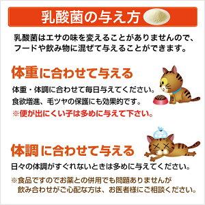 犬猫乳酸菌サプリメントプラチナ乳酸菌5000初回限定お試し500円(ご家族様2コまで)[ペットサプリメント乳酸菌]