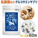 犬 関節 サプリメント(ラン)60粒入(小型犬1ヵ月分)ペットサプリ グルコサミン コンドロイチン コラーゲン ビタミンD3 乳酸菌配合