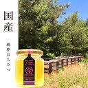 【国産 蜂蜜】HACHIBEIハニーNO.7 渓谷の栃はちみつ レギュラーサイズ 120gはちべいのハチミツ