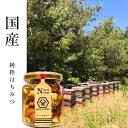 【国産 蜂蜜】HACHIBEIナッツスター(ナッツの蜂蜜漬け)はちみつ レギュラーサイズ 120gはちべいのハチミツ