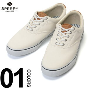 スニーカー 大きいサイズ メンズ 靴 キャンバス ローカット STRIPER CVO WHITE ホワイト US12 US13 スペリー トップサイダー SPERRY TOPSIDER