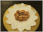 クリスマスケーキ用誕生日ネームプレート