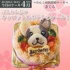 【4月のケーキ・さくら】ほんわか春のキャロット&ポテトの似顔絵犬用ケーキ!12cm(犬、ケーキ、春、さくら、お花見)