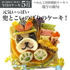 【5月のケーキ・端午の節句】元気いっぱい兜とこいのぼりの似顔絵犬用ケーキ!12cm(犬、ケーキ、こどもの日、端午の節句、兜、こいのぼり)