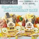【6月のケーキ】HappyWeddingなJuneBIRTHDAYCAKE12cm(似顔絵犬用ケーキ犬ケーキ6月結婚式おやつウェディング)