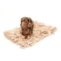 [犬用首輪][おしゃれ首輪で虫よけ]アロマティック・カラードッグペパーミント&ゼラニウム