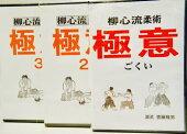 DVD柳心流柔術極意1
