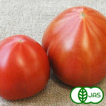 [有機栽培] トマト(2〜4玉)