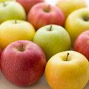 特別栽培 りんご (2個) 減農薬/低農薬/エコファーマー