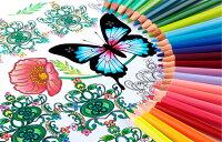 [3%オフクーポン配布中] 三菱鉛筆 色鉛筆 No.888 36色セット動植物や自然の表現、グラデーションの塗り分けに適したカラーラインナップ 大人の塗り絵 コロリアージュに最適 塗り絵用色鉛筆