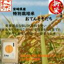 新米 令和二年産 特別栽培米 3kg おてんとそだち 有機BUIK肥料で育てた栄養満点 微農薬 安心・安全のお米(一部地域 送料無料)