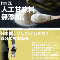ホエイプロテインプロテイン1kgバナナ女性無添加◆BUMPS(バンプス)日本製ホエイプロテイン1kg◆バナナ味ストロベリー味ココア味プロテインダイエット男性お試し国内製造ISO22000NSF-GMP溶けやすい送料無料